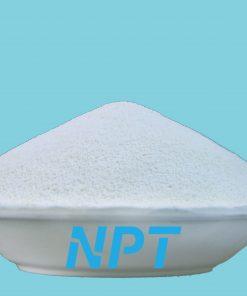 Acid Protease