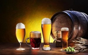 nấm men trong sản xuất bia